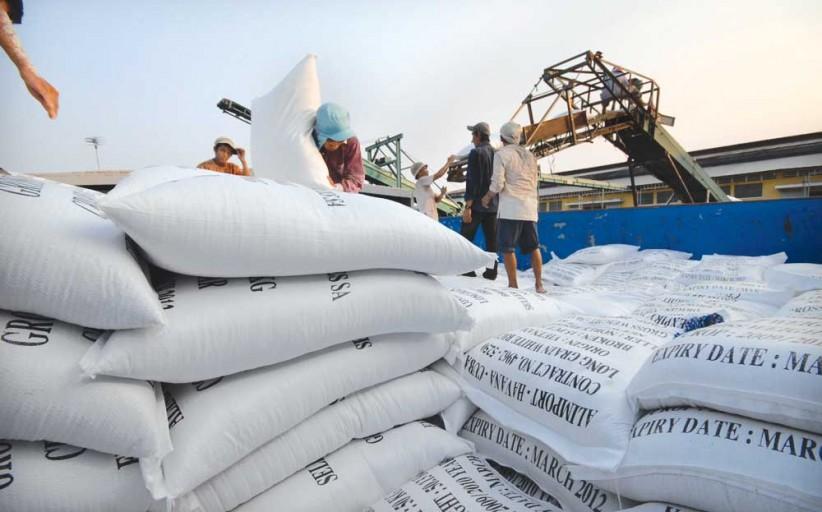 Thủ tục xin giấy phép kinh doanh xuất khẩu gạo