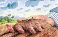 Tư vấn về các trường hợp chuyển mục đích sử dụng đất