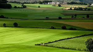 Tổng hợp công thức tính tiền sử dụng đất khi chuyển mục đích sử dụng đất